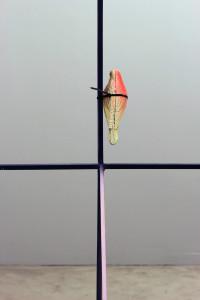 decoy-bird-01