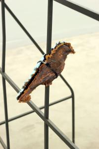 decoy-bird-03