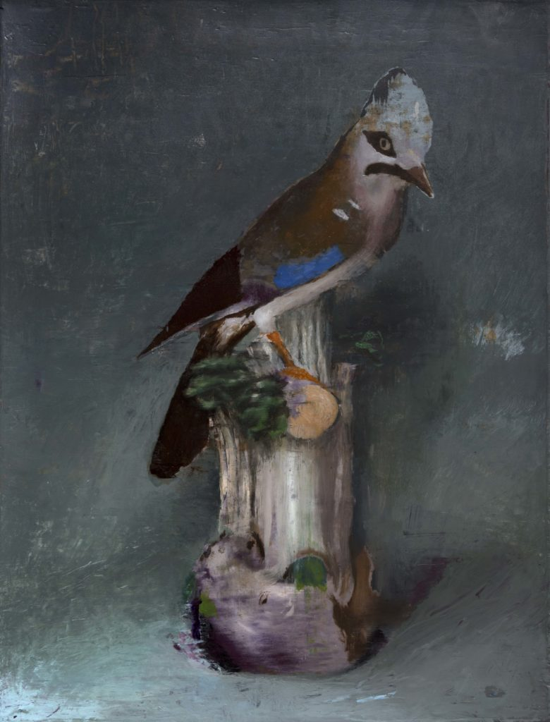 Parakeet-Mothers-Bliss-Ncontemporary-Milan-Cristiano-Tassinari-Aldini